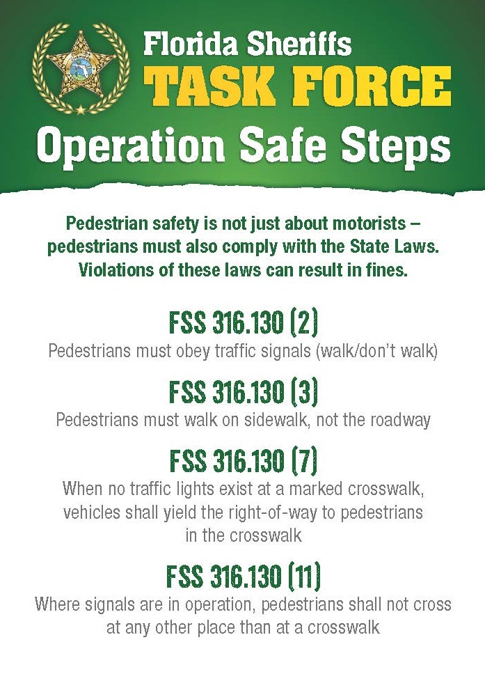 Front Page of Operation Safe Steps Palm Card