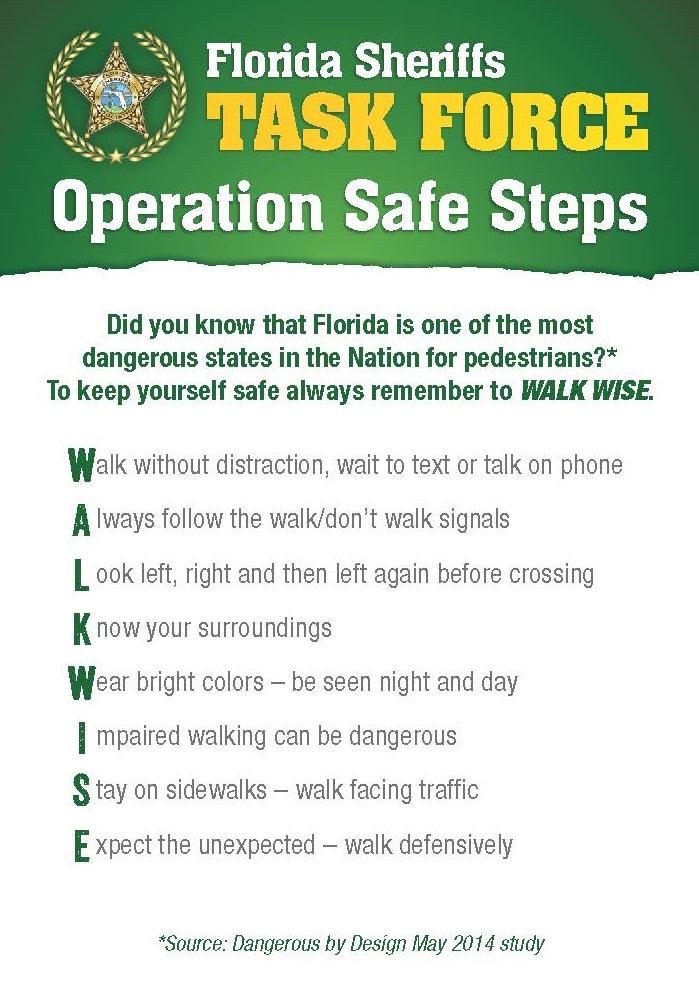 Back Page of Operation Safe Steps Palm Card
